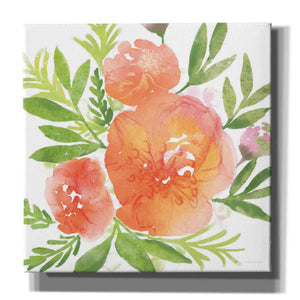 'Peachy Floral I' by Bluebird Barn, Canvas Wall Art