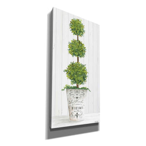 'Magnificent Topiary I' by Cindy Jacobs, Canvas Wall Art