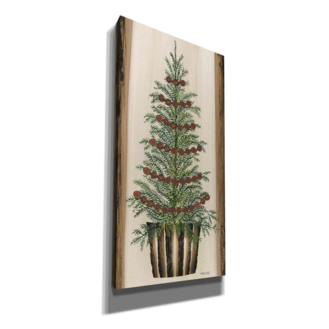 'Woodland Spruce Tree' by Cindy Jacobs, Canvas Wall Art