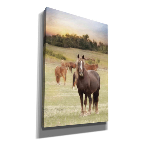 Image of 'Jackson Horse Farm' by Lori Deiter, Canvas Wall Art