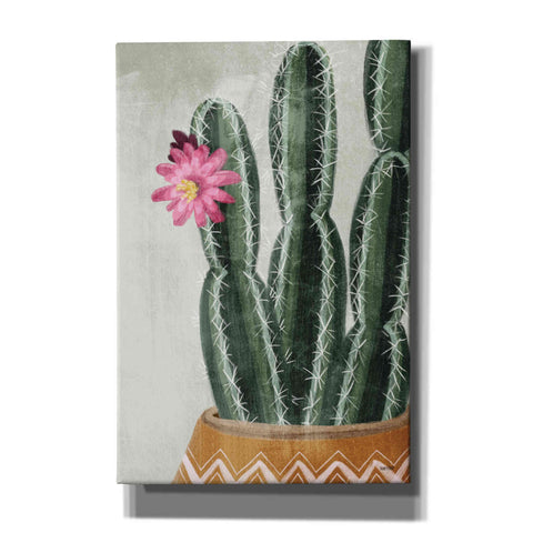 Image of 'Flowering Cactus' by House Fenway, Canvas Wall Art