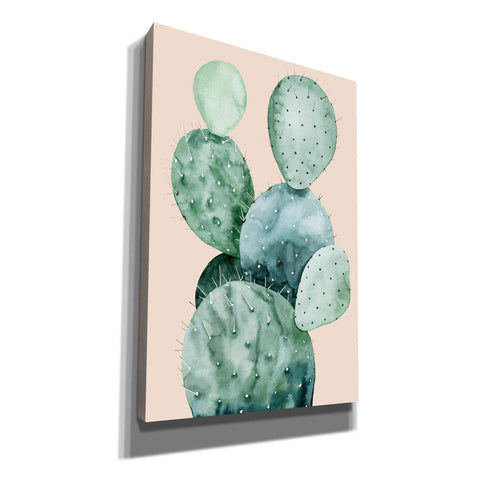 'Cactus on Coral II' by Grace Pop, Canvas Wall Art