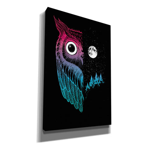 'Night Owl' by Michael Buxton, Canvas Wall Art