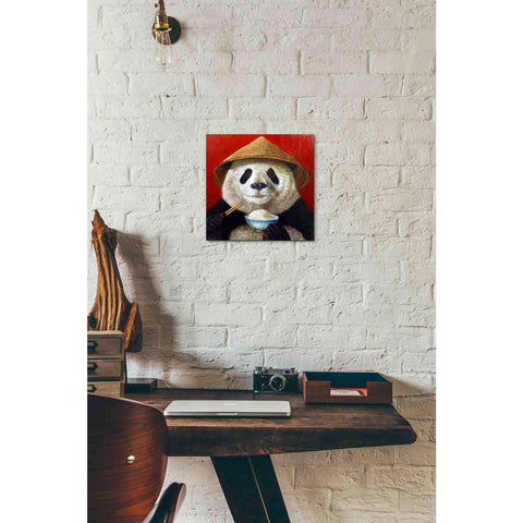 'Panda' by Lucia Heffernan, Canvas Wall Art,12 x 12