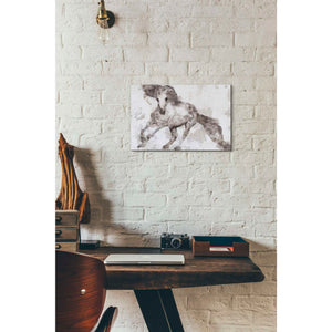 'Alydar Horse' by Irena Orlov, Canvas Wall Art,18 x 12