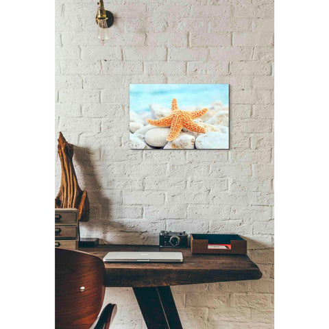'Sea Star Dreams' Giclee Canvas Wall Art