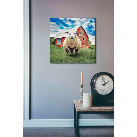 Image of 'Sunday Afternoon Sheep Pose' by Bluebird Barn, Canvas Wall Art,18 x 18