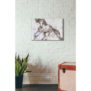 'Alydar Horse' by Irena Orlov, Canvas Wall Art,26 x 18