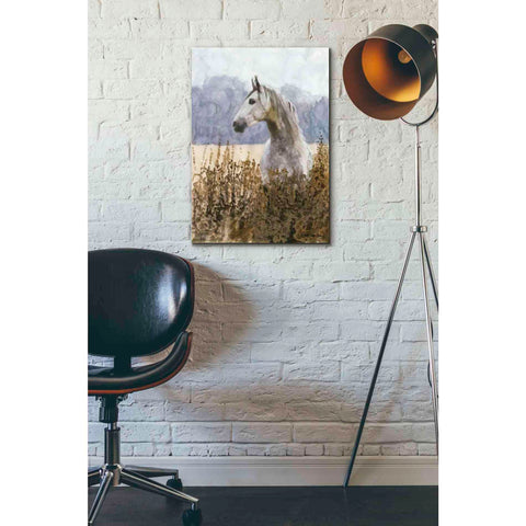 Image of 'Beauty' by Stellar Design Studio, Giclee Canvas Wall Art