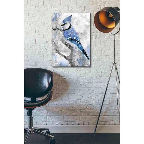 Image of 'Blue Jay 2' by Stellar Design Studio, Giclee Canvas Wall Art