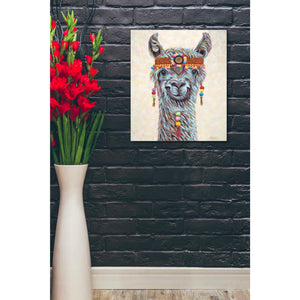 'Hippie Llama I' by Carolee Vitaletti, Giclee Canvas Wall Art
