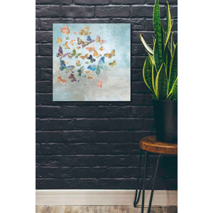 'Beautiful Butterflies v3 Square' by Danhui Nai, Canvas Wall Art,26 x 26