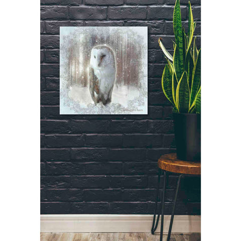 Image of 'Enchanted Winter Owl' by Bluebird Barn, Canvas Wall Art,26 x 26