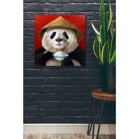 'Panda' by Lucia Heffernan, Canvas Wall Art,26 x 26