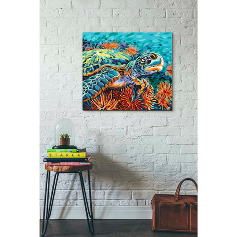 Image of 'Sea Sweetheart I' by Carolee Vitaletti, Giclee Canvas Wall Art