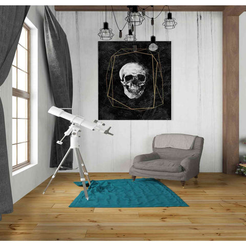 'Cosmic Skull' by Kyra Brown, Canvas Wall Art,26 x 30