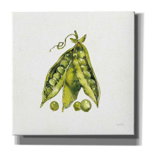 Image of 'Veggie Market IV Peas' by Anne Tavoletti, Giclee Canvas Wall Art