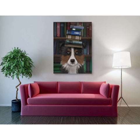 'Border Collie, Tricolour, and Books,' by Fab Funky, Giclee Canvas Wall Art
