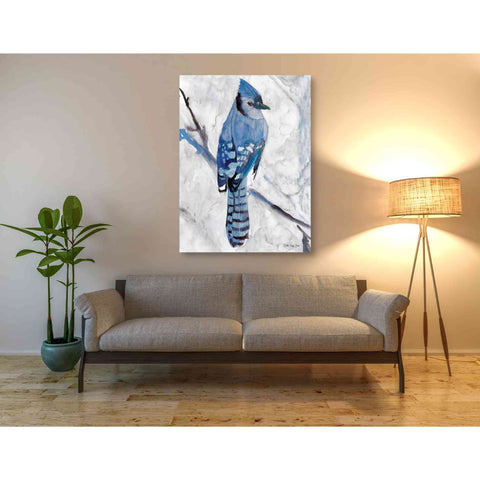 Image of 'Blue Jay 1' by Stellar Design Studio, Giclee Canvas Wall Art