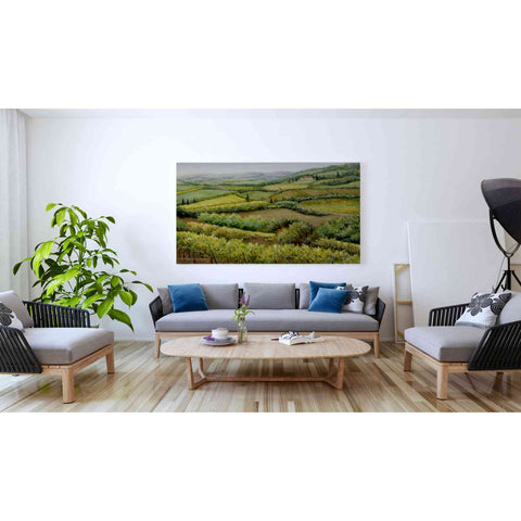 Image of 'Vines and Valleys' by Barbara Felisky, Giclee Canvas Wall Art
