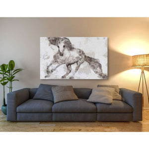 'Alydar Horse' by Irena Orlov, Canvas Wall Art,60 x 40