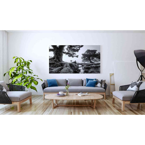 'Black & White Fanal' by Martin Podt, Canvas Wall Art,60 x 40