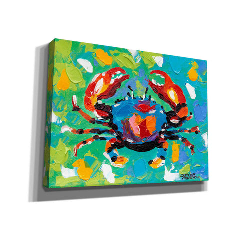 Image of 'Seaside Crab I' by Carolee Vitaletti Giclee Canvas Wall Art
