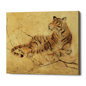 'Global Tiger Light Crop' by Cheri Blum, Giclee Canvas Wall Art