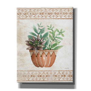 'Southwest Terracotta Succulents I' by Cindy Jacobs, Giclee Canvas Wall Art