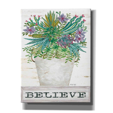 Image of 'Believe Succulents' by Cindy Jacobs, Giclee Canvas Wall Art