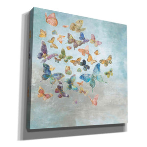 'Beautiful Butterflies v3 Square' by Danhui Nai, Canvas Wall Art,Size 1 Sqaure