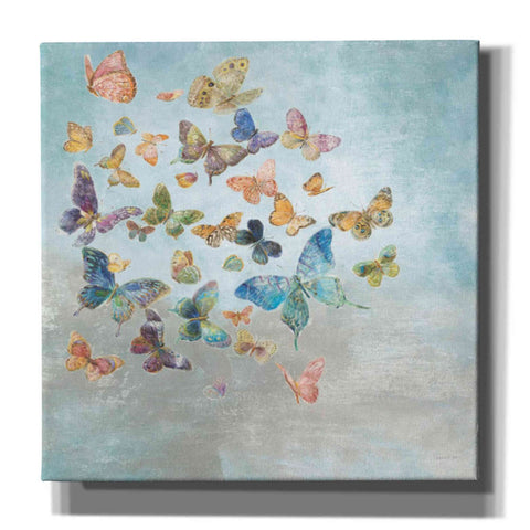 Image of 'Beautiful Butterflies v3 Square' by Danhui Nai, Canvas Wall Art,Size 1 Sqaure