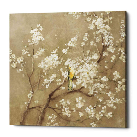 "Image of ""White Cherry Blossom I Neutral"" by Danhui Nai, Giclee Canvas Wall Art"