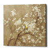 """White Cherry Blossom I Neutral"" by Danhui Nai, Giclee Canvas Wall Art"