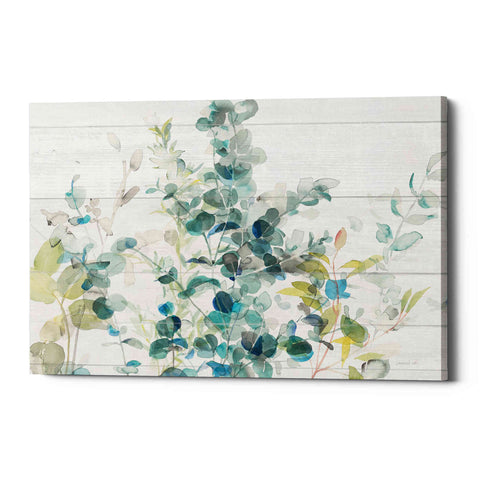 Image of 'Eucalyptus I on Shiplap Crop' by Danhui Nai, Canvas Wall Art