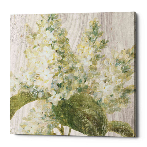 "Image of ""Scented Cottage Florals II Crop"" by Danhui Nai, Giclee Canvas Wall Art"