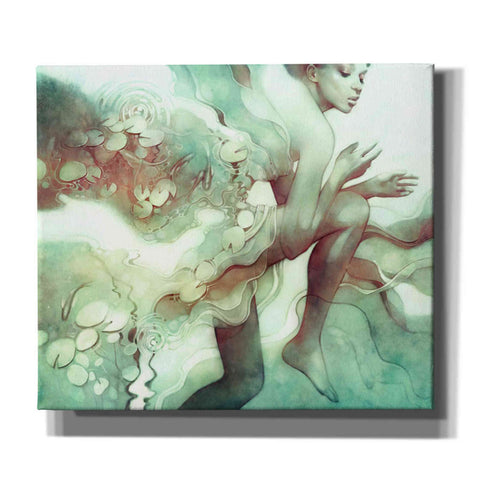 Image of 'Flood' by Anna Dittman, Canvas Wall Art,Size C Landscape
