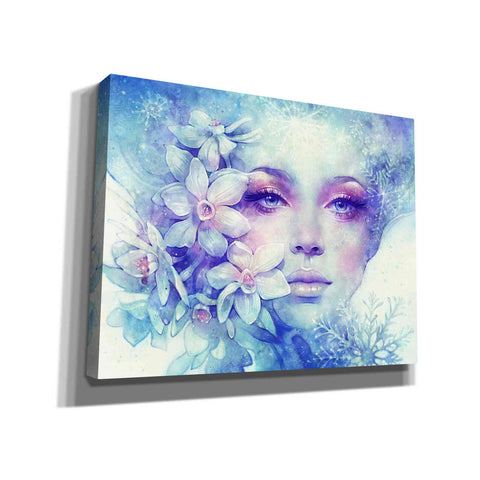 Image of 'December' by Anna Dittman, Canvas Wall Art,Size B Landscape