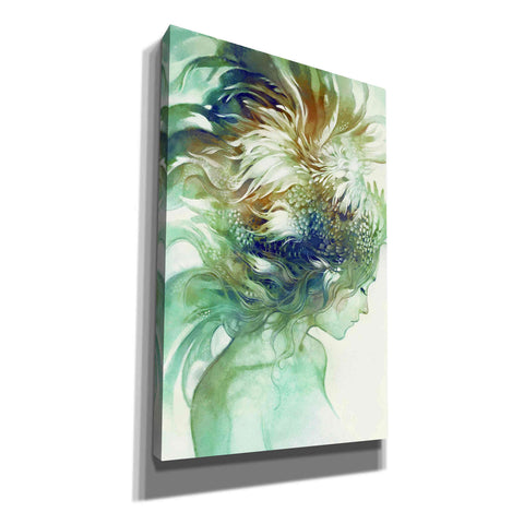 Image of 'Comb' by Anna Dittman, Giclee Canvas Wall Art