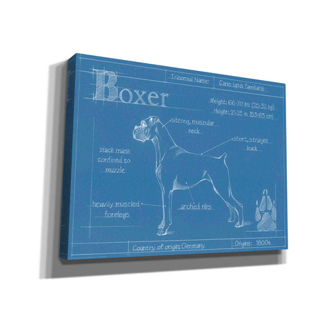 Image of 'Blueprint Boxer' by Ethan Harper Canvas Wall Art,Size B Landscape