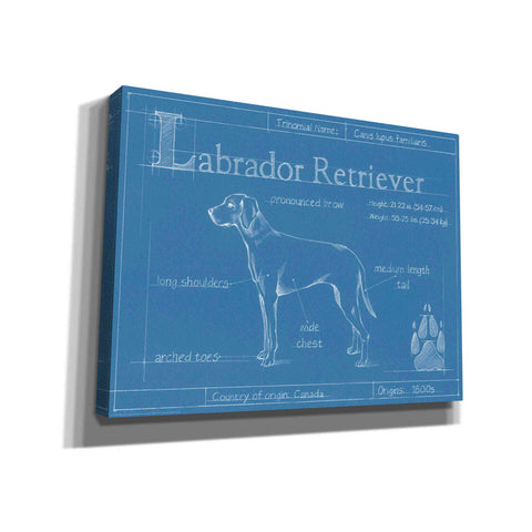 Image of 'Blueprint Labrador Retriever' by Ethan Harper Canvas Wall Art,Size B Landscape
