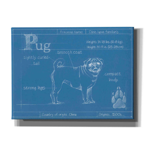 Image of 'Blueprint Pug' by Ethan Harper Canvas Wall Art,Size B Landscape