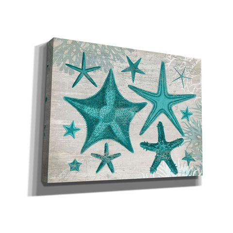 'Green Starfish Collection' by Fab Funky, Giclee Canvas Wall Art