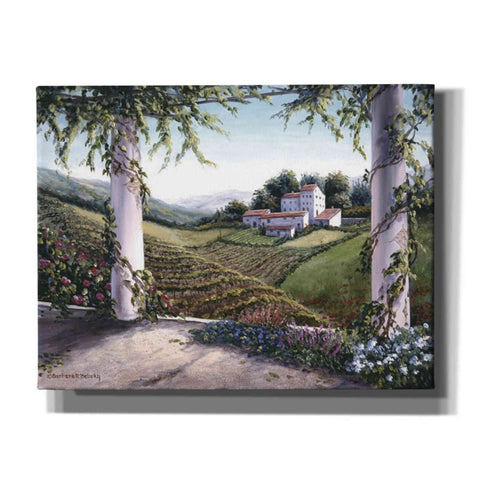 Image of 'Terrace Vista' by Barbara Felisky, Giclee Canvas Wall Art