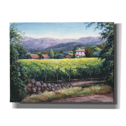Image of 'Silverado Trail Napa' by Barbara Felisky, Giclee Canvas Wall Art