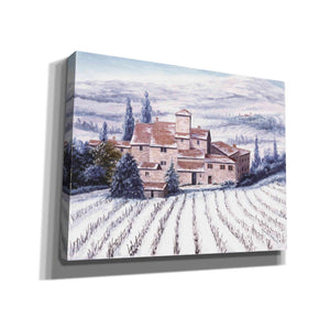 'The Vines are Resting' by Barbara Felisky, Canvas Wall Art,Size B Landscape
