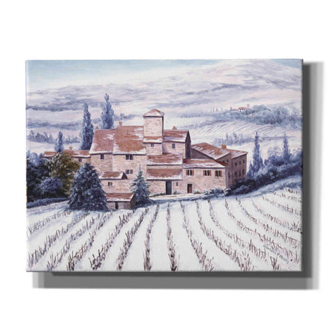 Image of 'The Vines are Resting' by Barbara Felisky, Canvas Wall Art,Size B Landscape