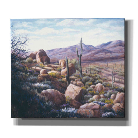 Image of 'Cactus in the Desert' by Barbara Felisky, Giclee Canvas Wall Art