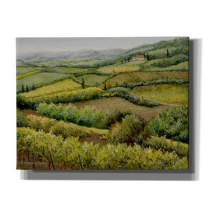 'Vines and Valleys' by Barbara Felisky, Giclee Canvas Wall Art