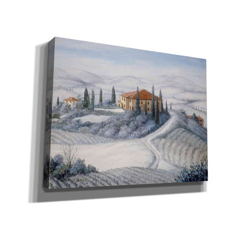 Image of 'A Wintery Vineyard' by Barbara Felisky, Giclee Canvas Wall Art